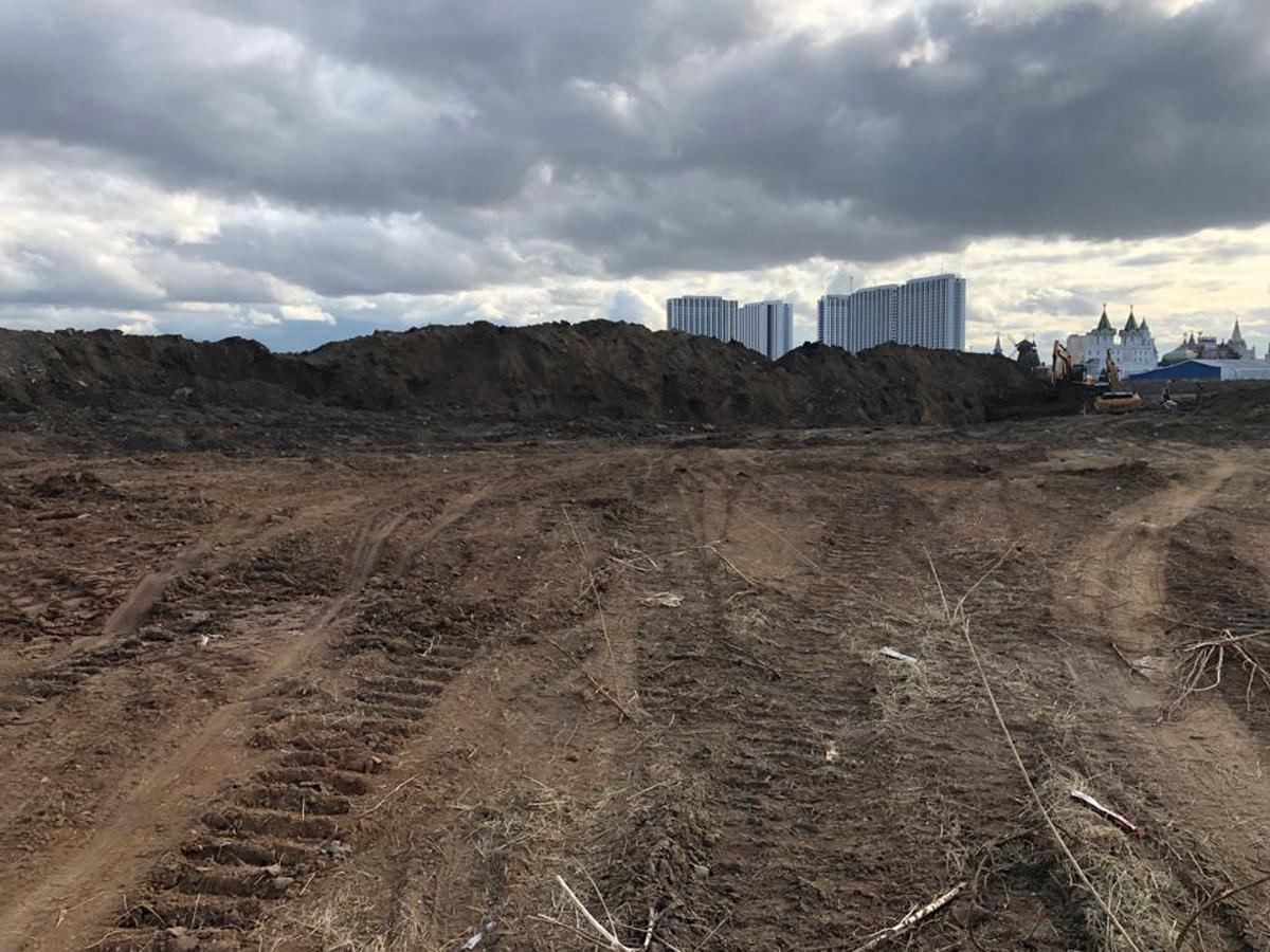 Депутат сообщил о ртутных лампах и горах мусора на месте Черкизовского рынка, отданного под реновацию